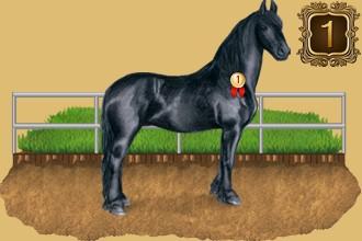 Classifica degli allevatori di cavalli per giorni di presenza